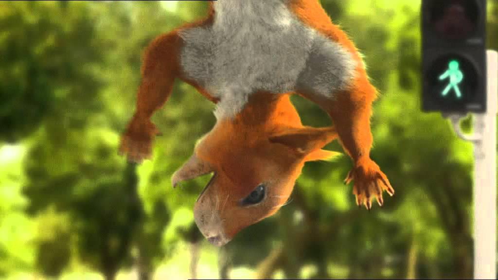 Wiewiórka z reklamy BGŻ
