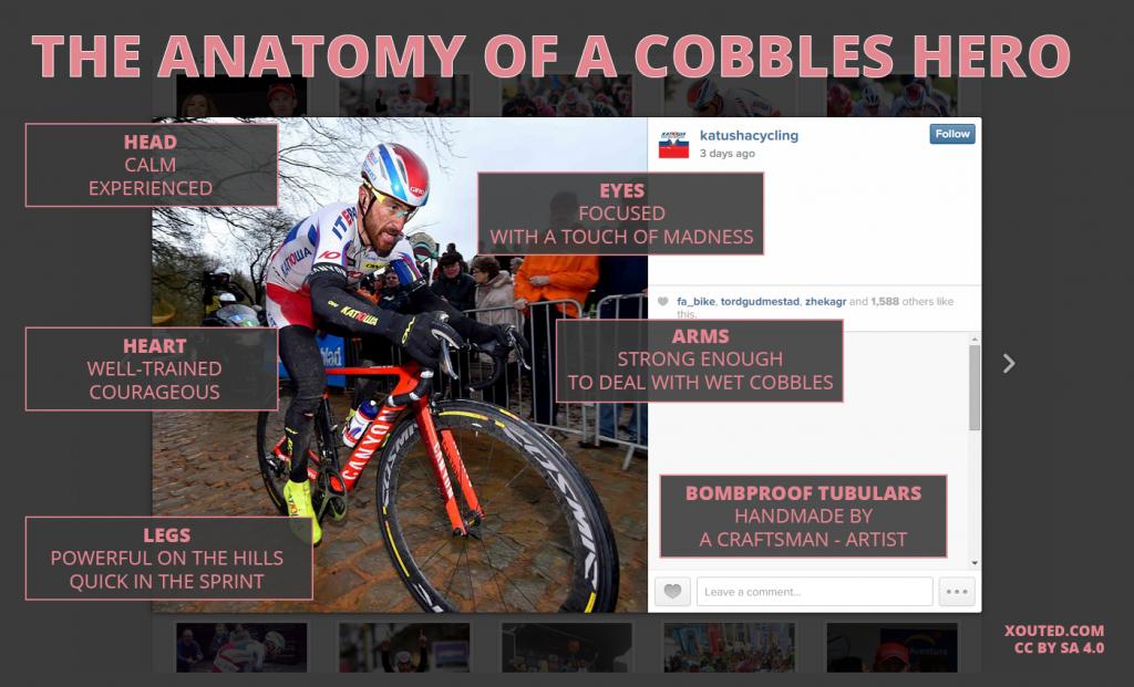 cobbled-cyclist-anatomy